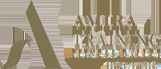 Amira Training Logo